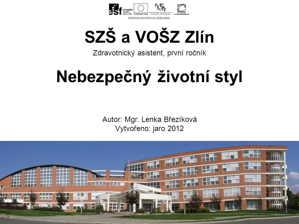 ZA, 2. ročník, Planimetrie, Vzájemná poloha přímek, Mgr. Kamil Šrubař