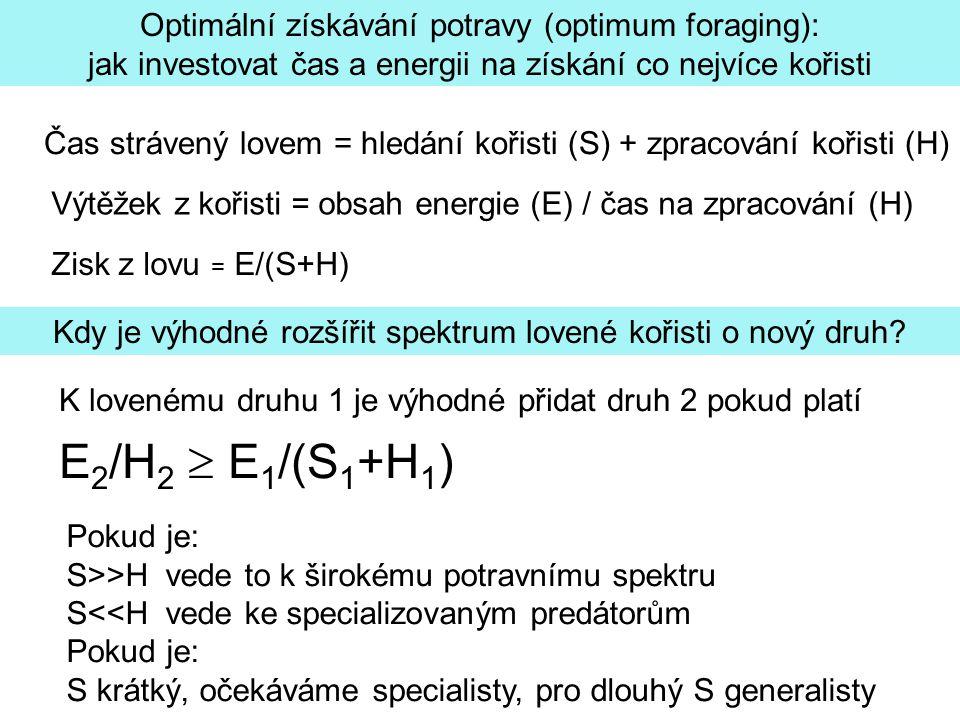 E2/H2  E1/(S1+H1) Optimální získávání potravy (optimum foraging):