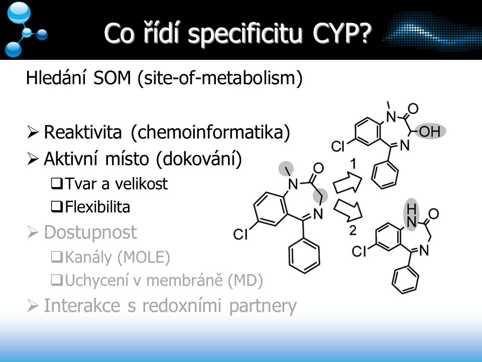 Co řídí specificitu CYP