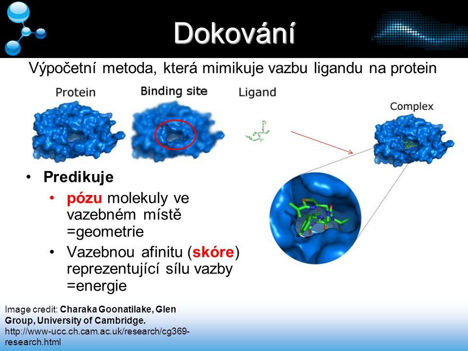 Dokování Výpočetní metoda, která mimikuje vazbu ligandu na protein