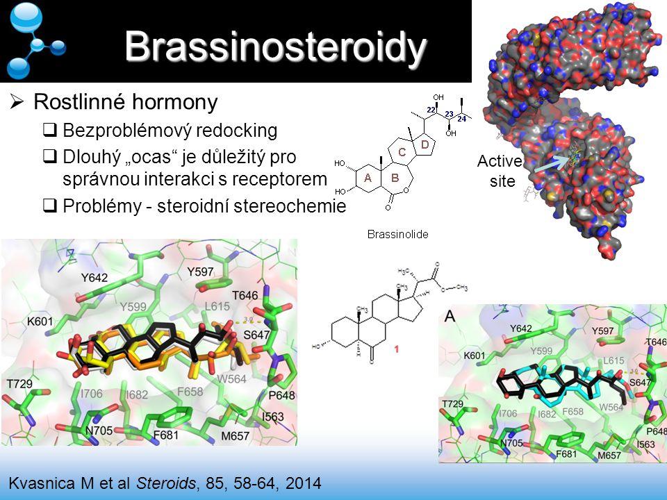 Brassinosteroidy Rostlinné hormony Bezproblémový redocking