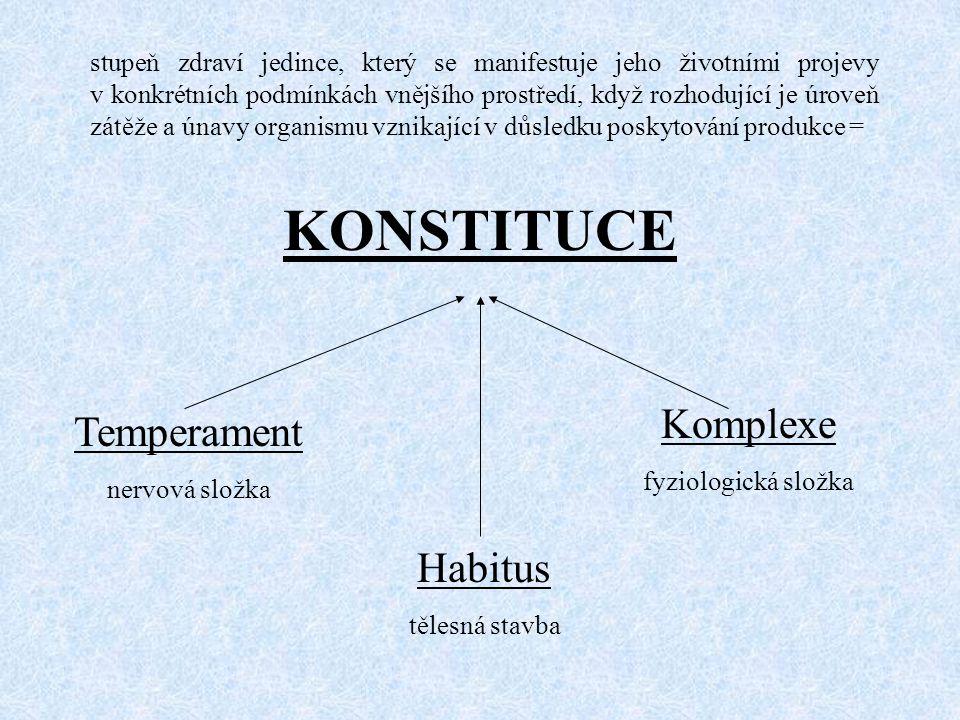 KONSTITUCE Komplexe Temperament Habitus