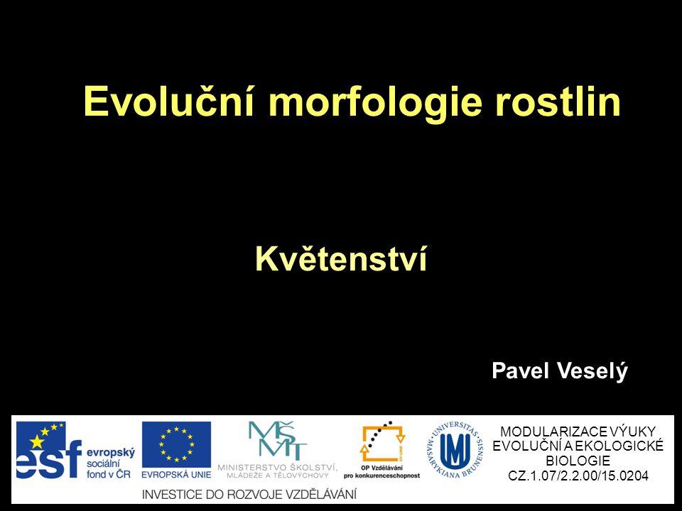 Evoluční morfologie rostlin