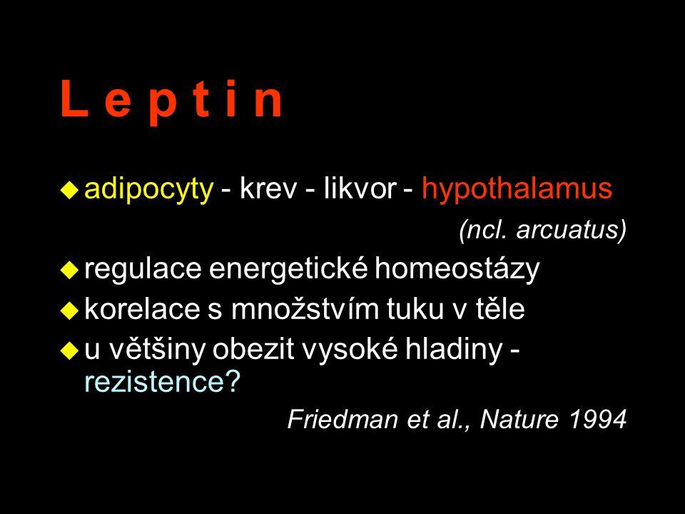 L e p t i n adipocyty - krev - likvor - hypothalamus (ncl. arcuatus)