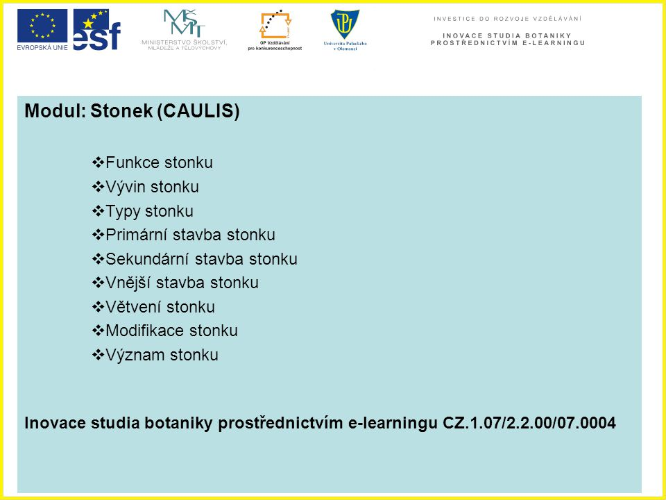 Modul: Stonek (CAULIS)