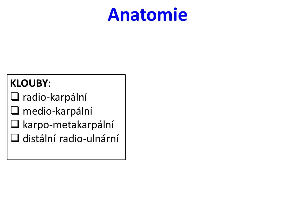 Anatomie KLOUBY: radio-karpální medio-karpální karpo-metakarpální