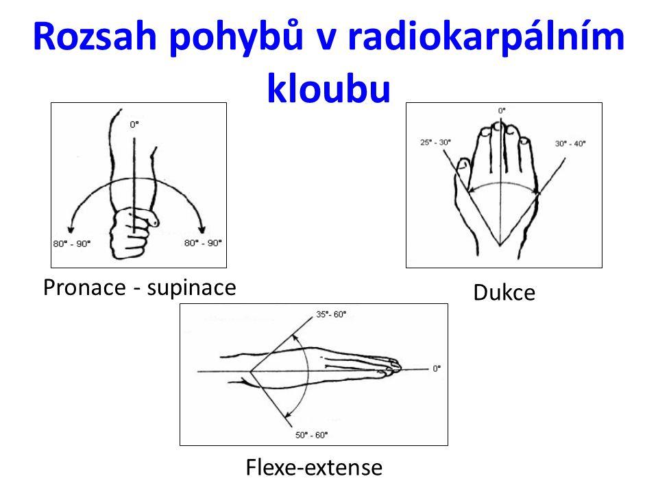 Rozsah pohybů v radiokarpálním kloubu