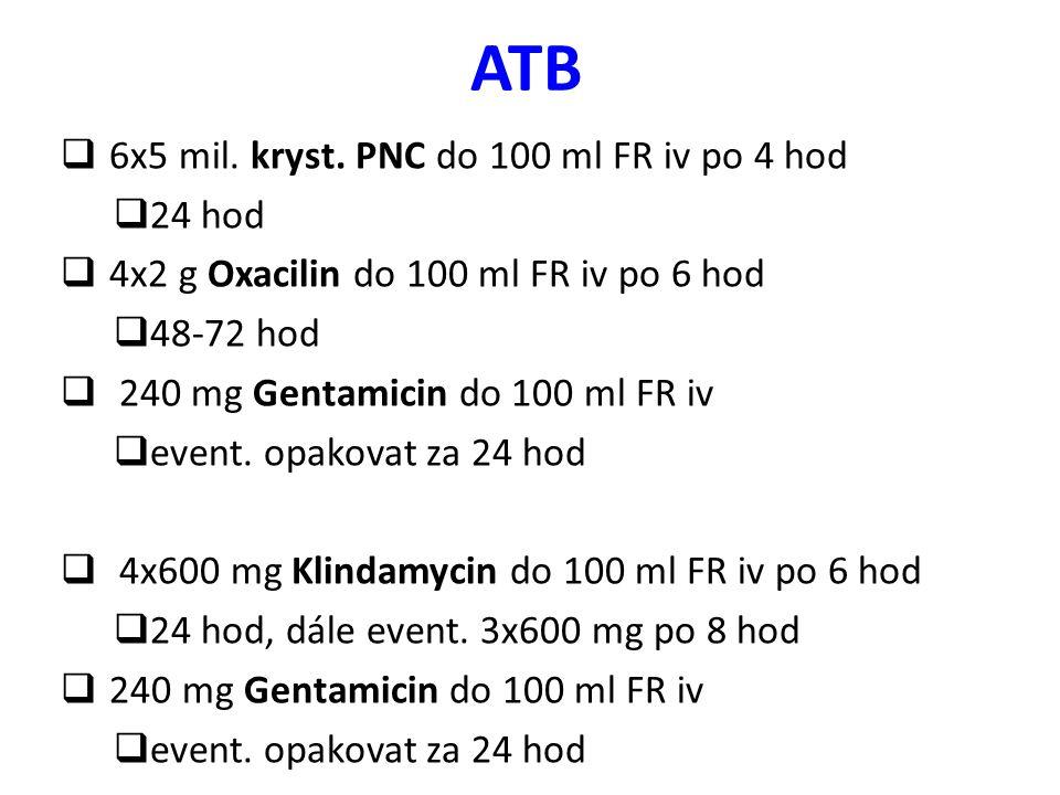 ATB 6x5 mil. kryst. PNC do 100 ml FR iv po 4 hod 24 hod