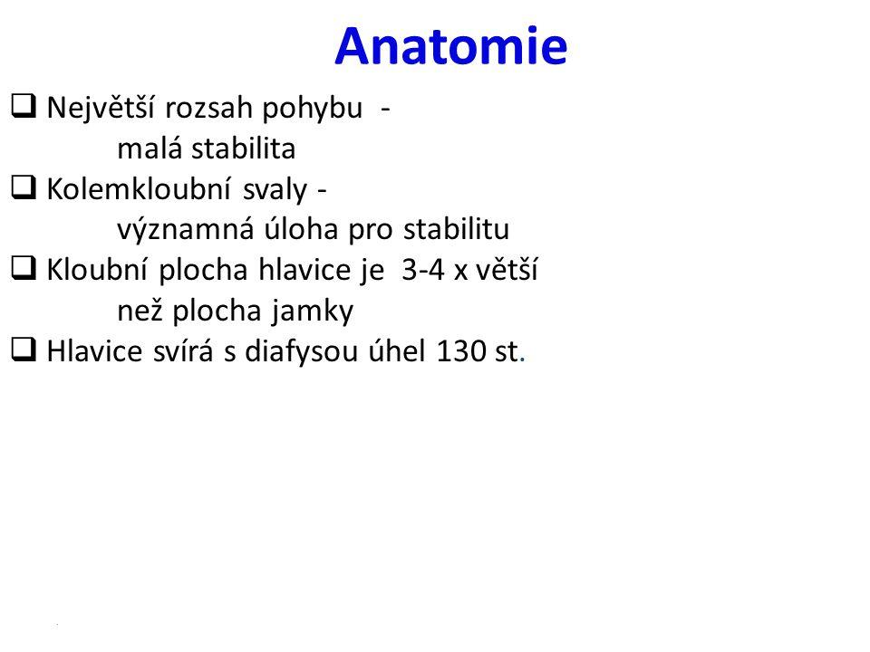 Anatomie Největší rozsah pohybu - malá stabilita Kolemkloubní svaly -