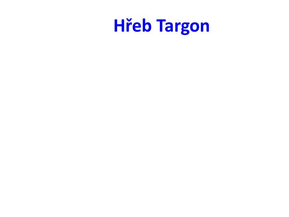 Hřeb Targon
