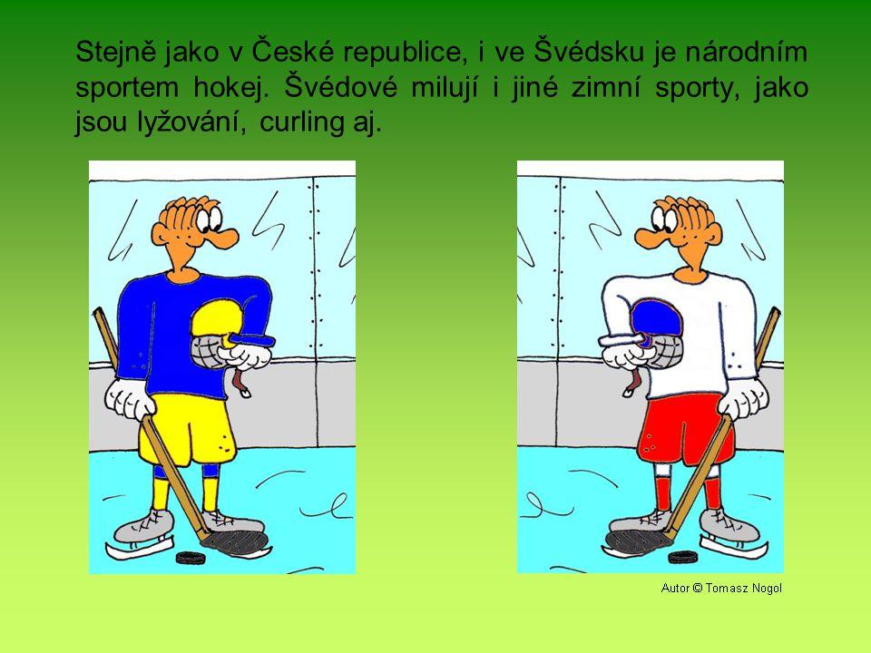 Stejně jako v České republice, i ve Švédsku je národním sportem hokej