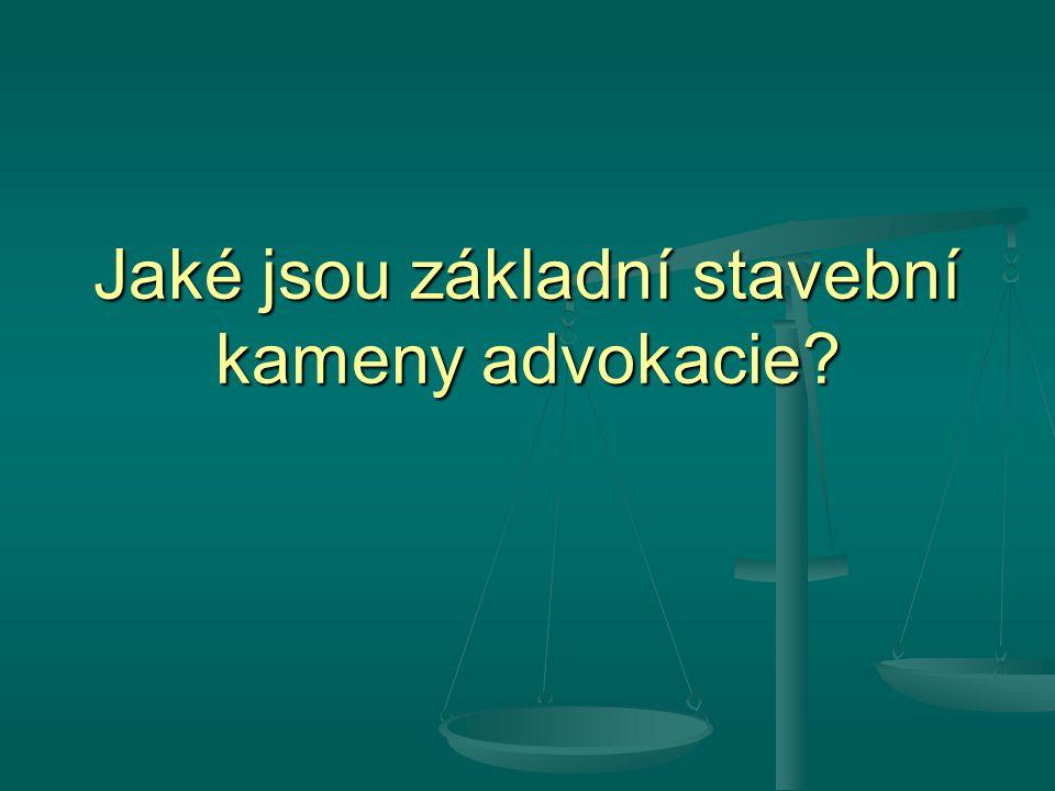 Jaké jsou základní stavební kameny advokacie