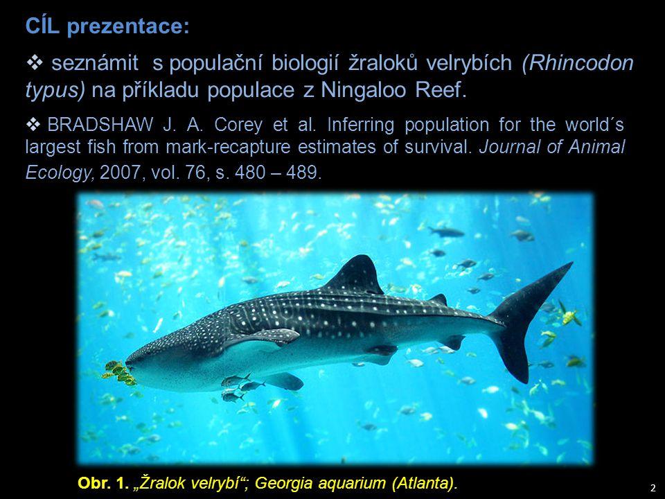 CÍL prezentace: seznámit s populační biologií žraloků velrybích (Rhincodon typus) na příkladu populace z Ningaloo Reef.