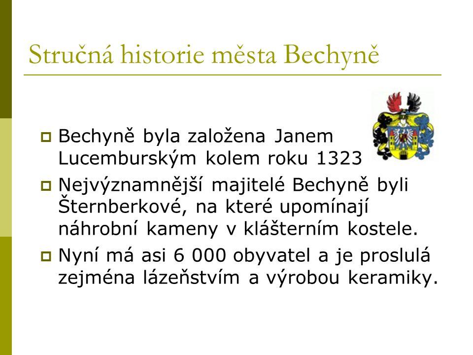 Stručná historie města Bechyně
