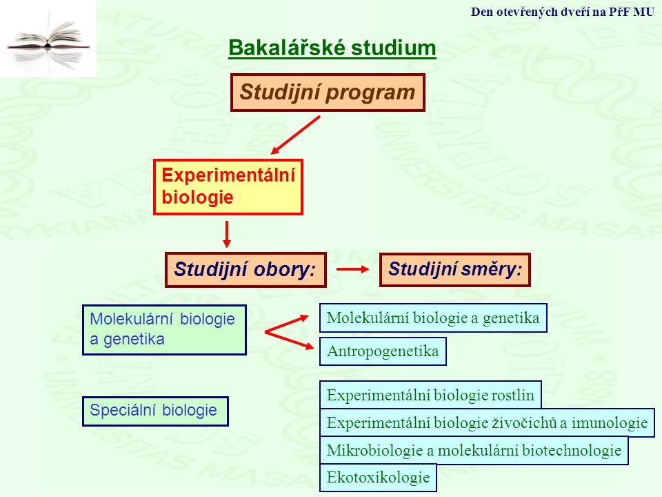 Bakalářské studium Studijní program Studijní obory: Experimentální