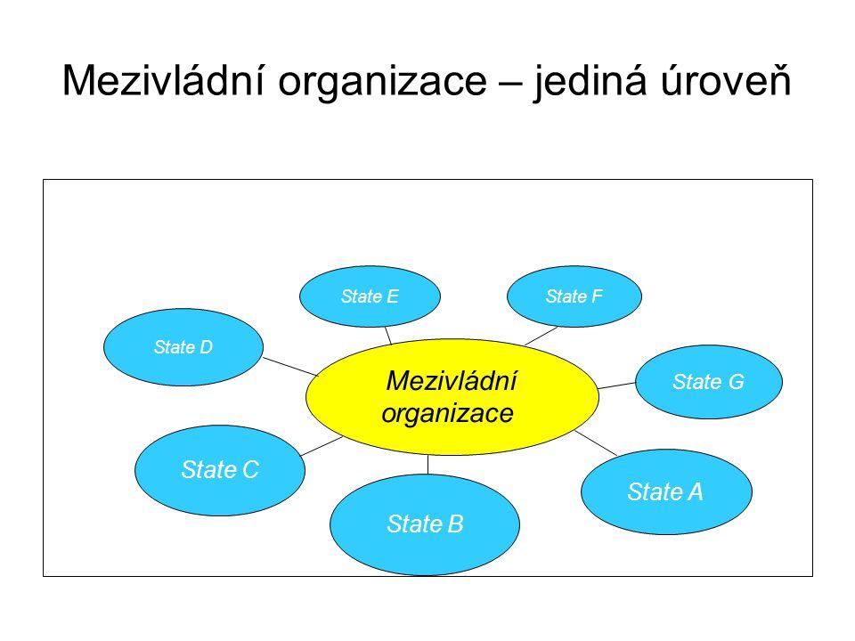 Mezivládní organizace – jediná úroveň