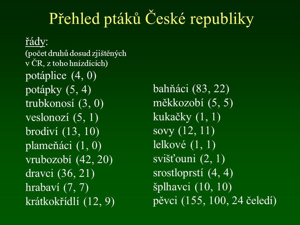 Přehled ptáků České republiky