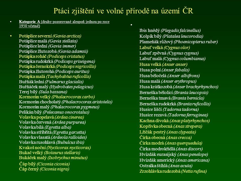 Ptáci zjištění ve volné přírodě na území ČR