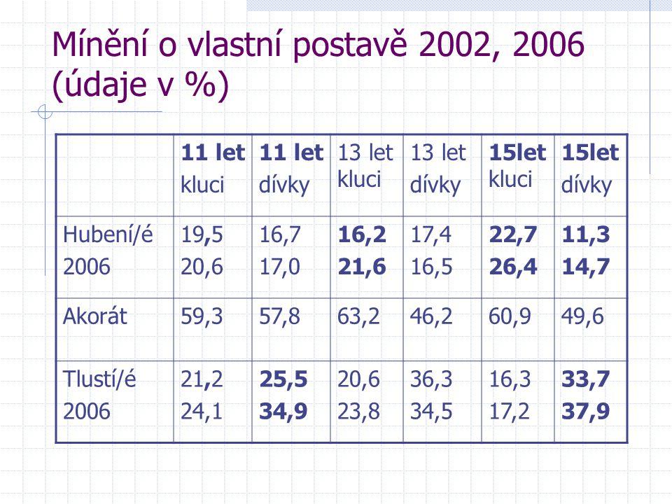 Mínění o vlastní postavě 2002, 2006 (údaje v %)
