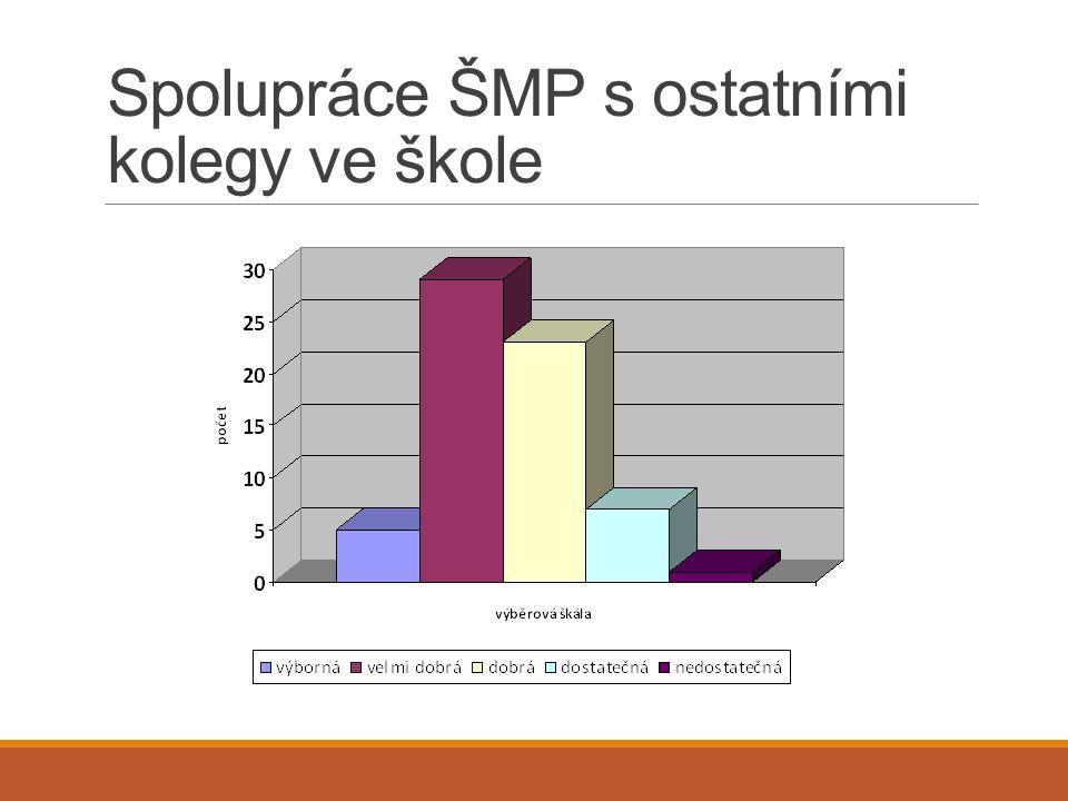 Spolupráce ŠMP s ostatními kolegy ve škole