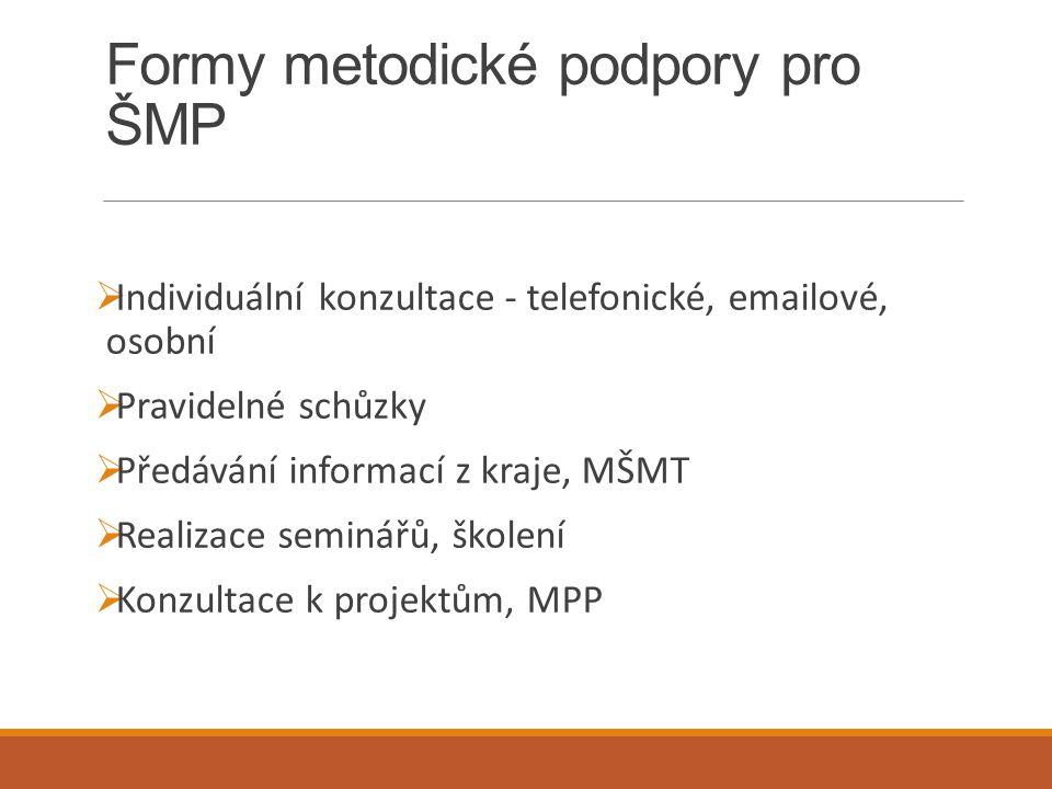 Formy metodické podpory pro ŠMP
