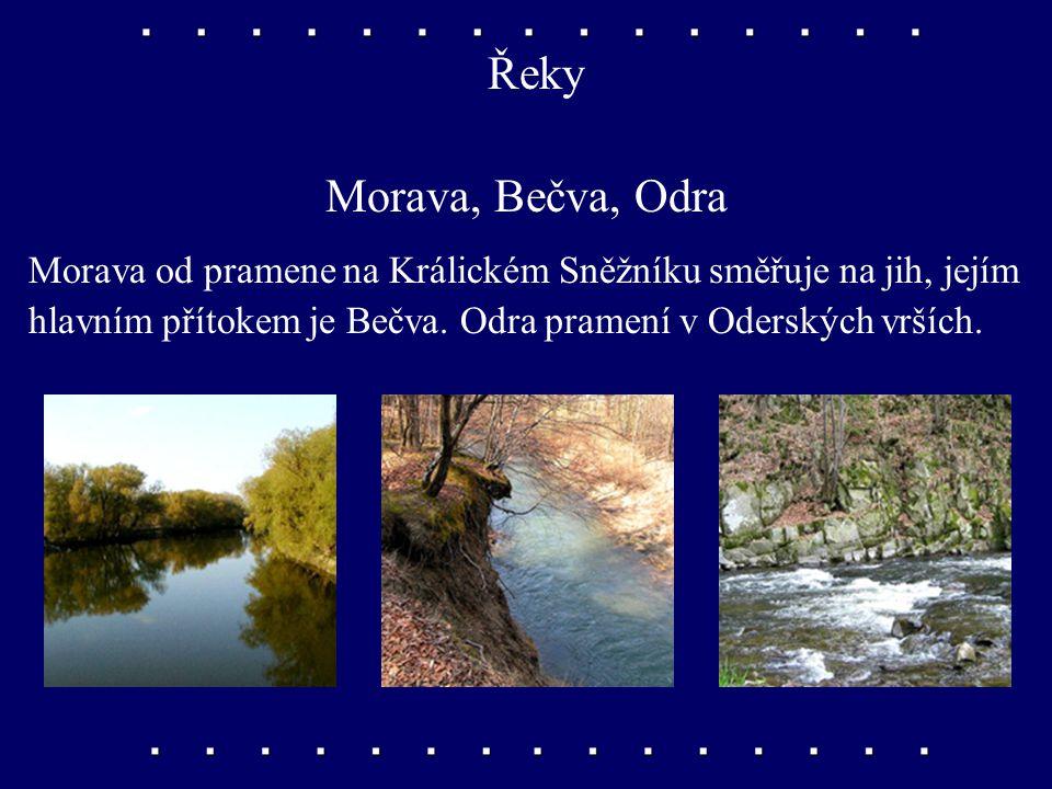 Řeky Morava, Bečva, Odra. Morava od pramene na Králickém Sněžníku směřuje na jih, jejím.
