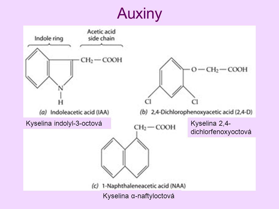 Auxiny Kyselina indolyl-3-octová Kyselina 2,4-dichlorfenoxyoctová