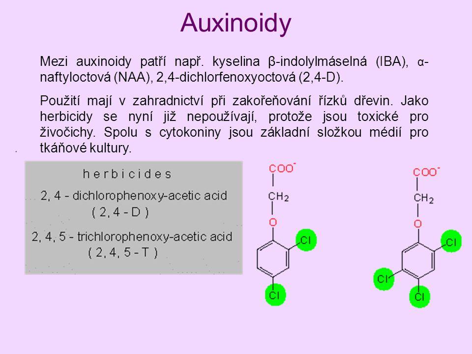 Auxinoidy Mezi auxinoidy patří např. kyselina β-indolylmáselná (IBA), α-naftyloctová (NAA), 2,4-dichlorfenoxyoctová (2,4-D).