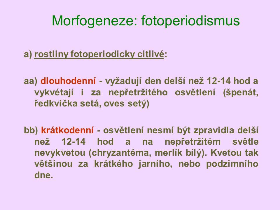 Morfogeneze: fotoperiodismus