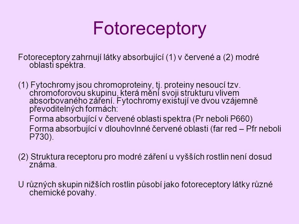 Fotoreceptory Fotoreceptory zahrnují látky absorbující (1) v červené a (2) modré oblasti spektra.