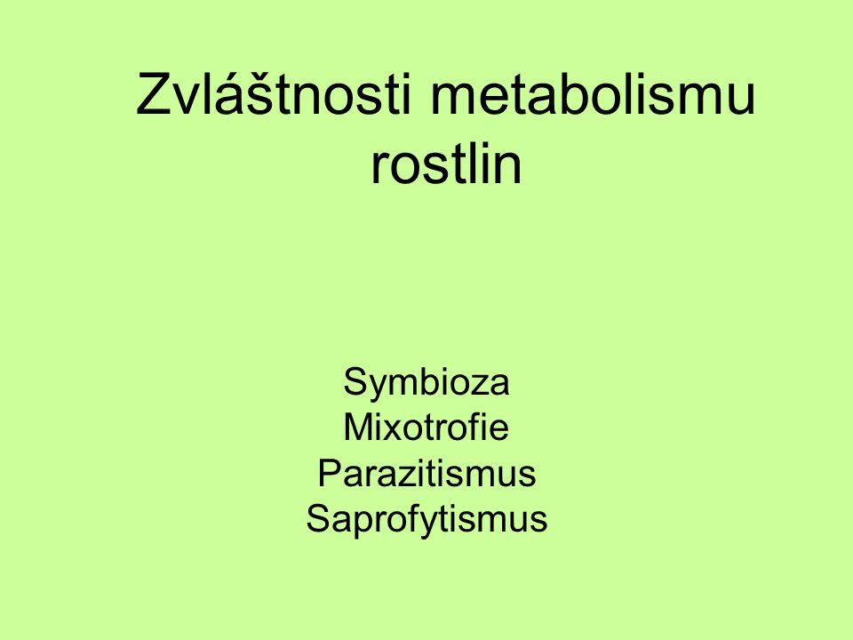 Zvláštnosti metabolismu rostlin