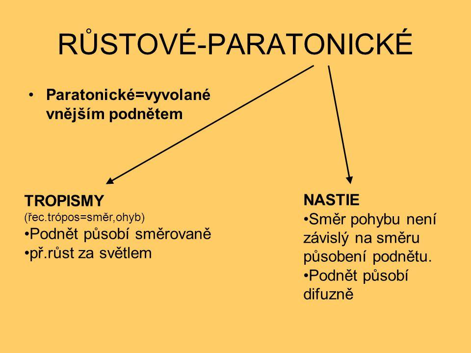 RŮSTOVÉ-PARATONICKÉ Paratonické=vyvolané vnějším podnětem TROPISMY