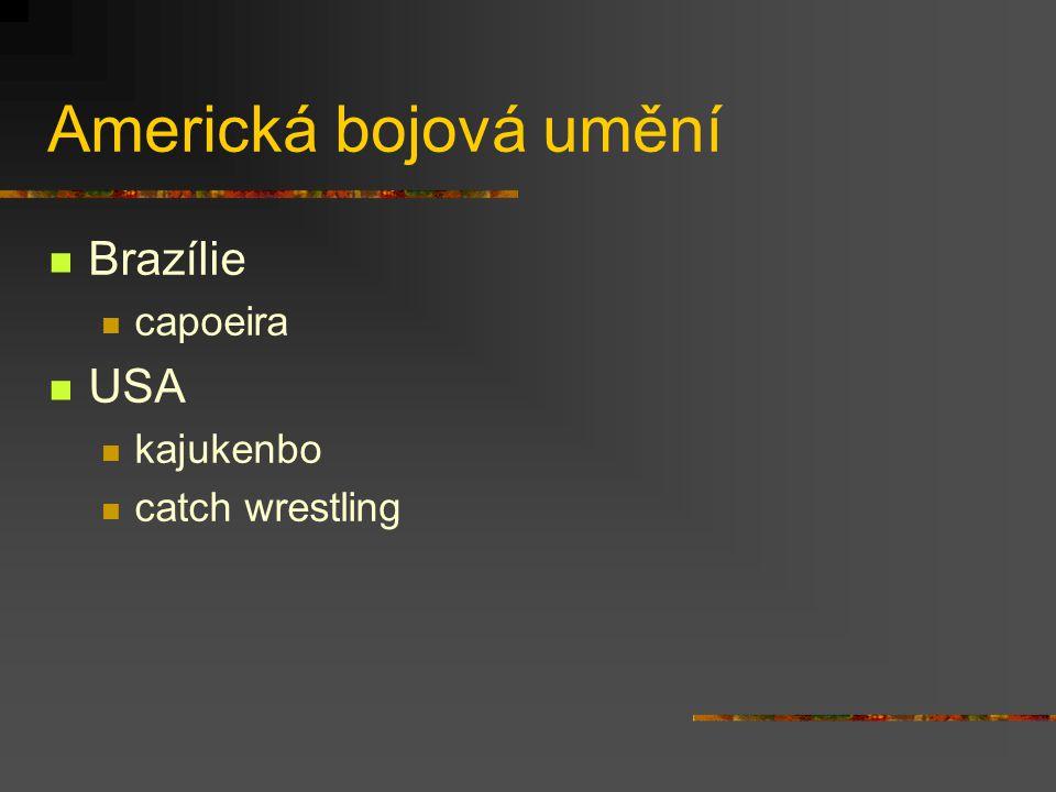 Americká bojová umění Brazílie capoeira USA kajukenbo catch wrestling