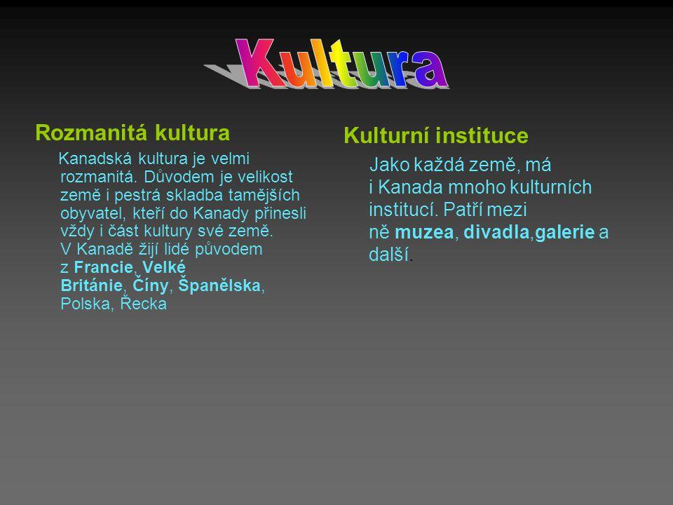 Kultura Rozmanitá kultura Kulturní instituce