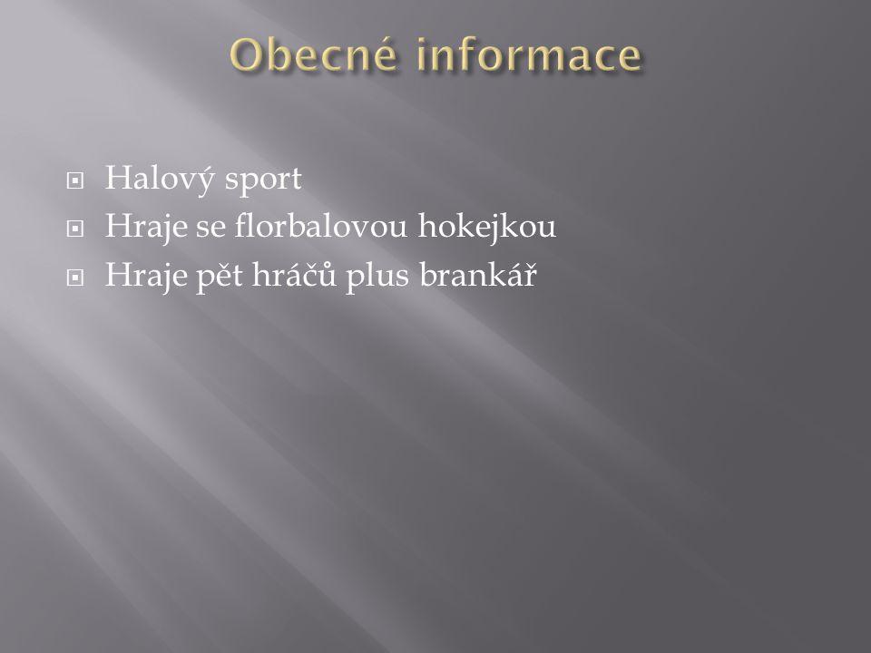 Obecné informace Halový sport Hraje se florbalovou hokejkou