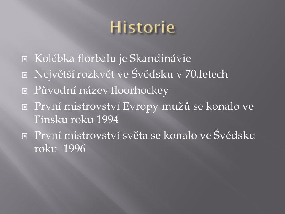 Historie Kolébka florbalu je Skandinávie