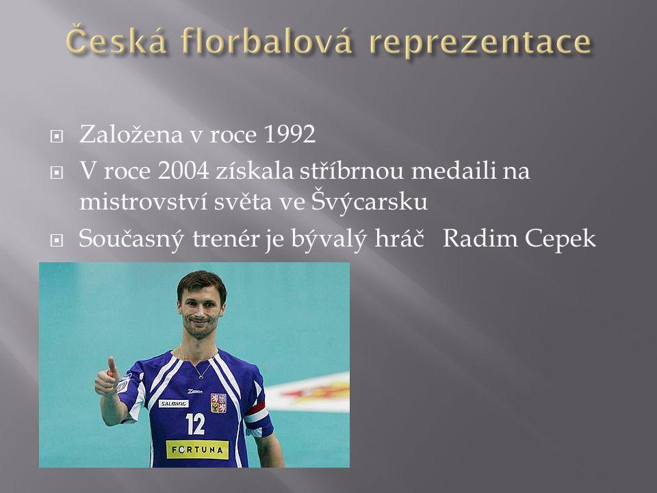 Česká florbalová reprezentace