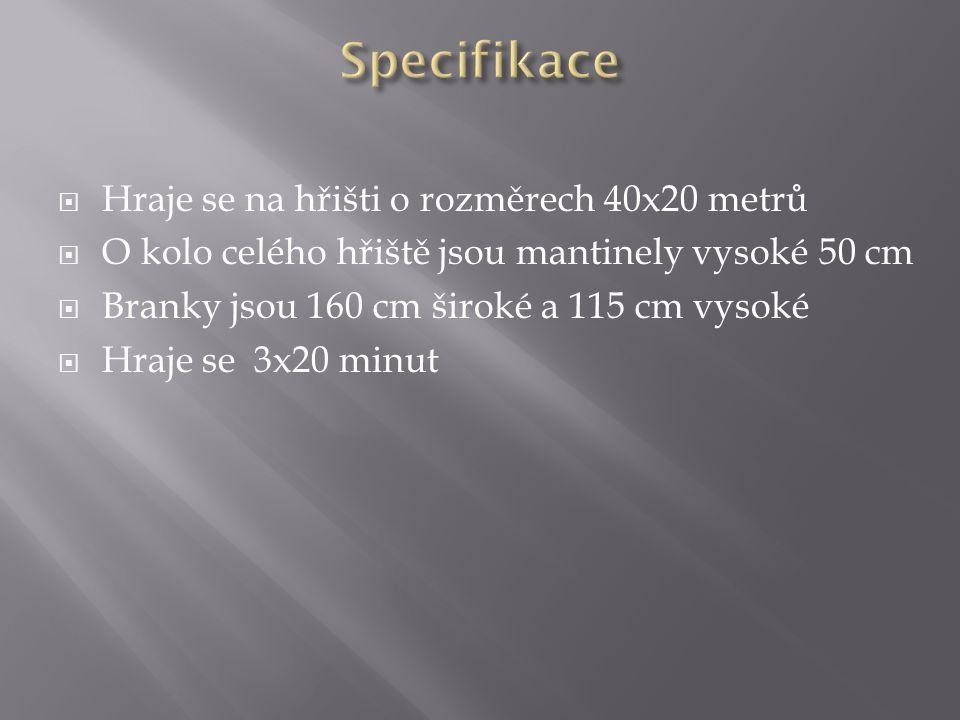 Specifikace Hraje se na hřišti o rozměrech 40x20 metrů