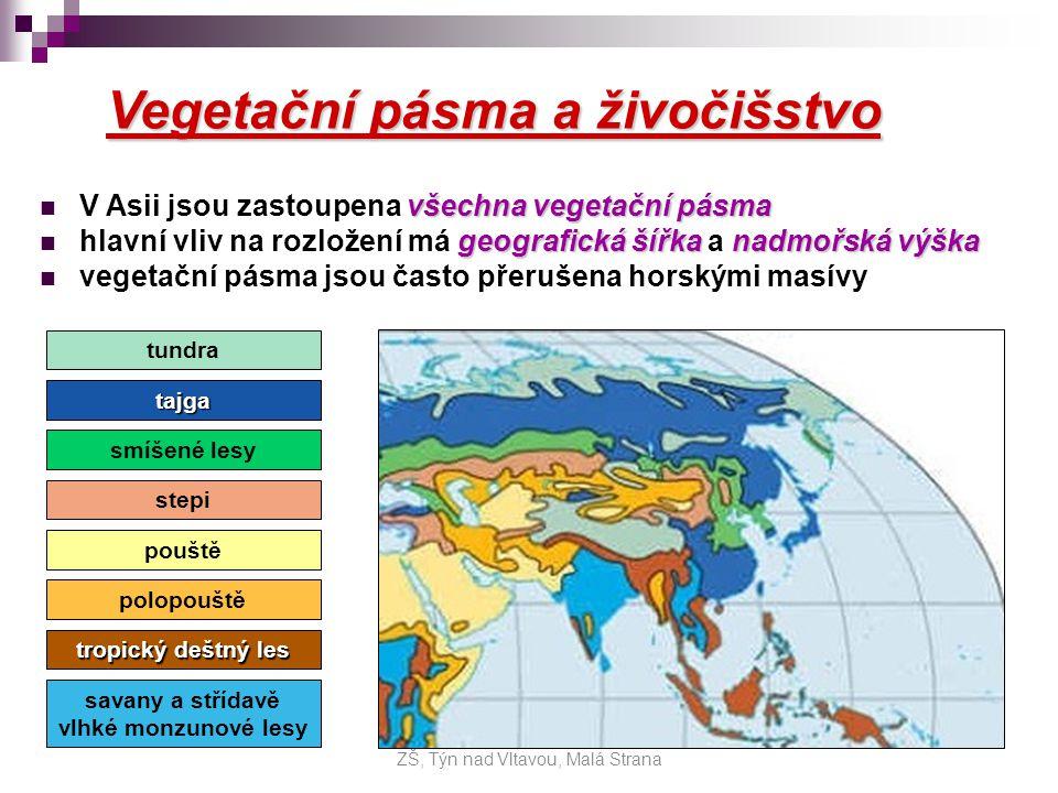 Vegetační pásma a živočišstvo