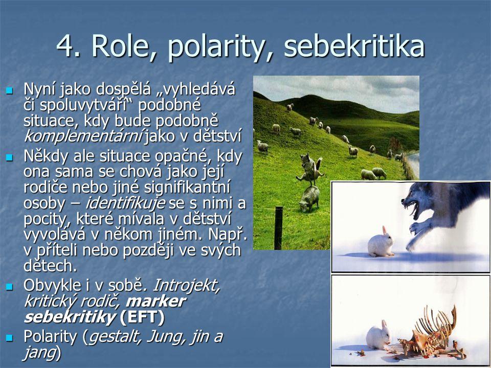 4. Role, polarity, sebekritika