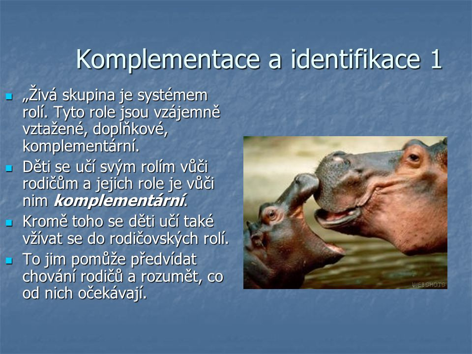 Komplementace a identifikace 1