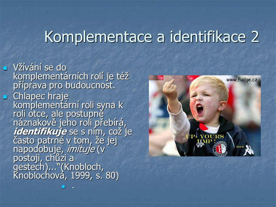 Komplementace a identifikace 2