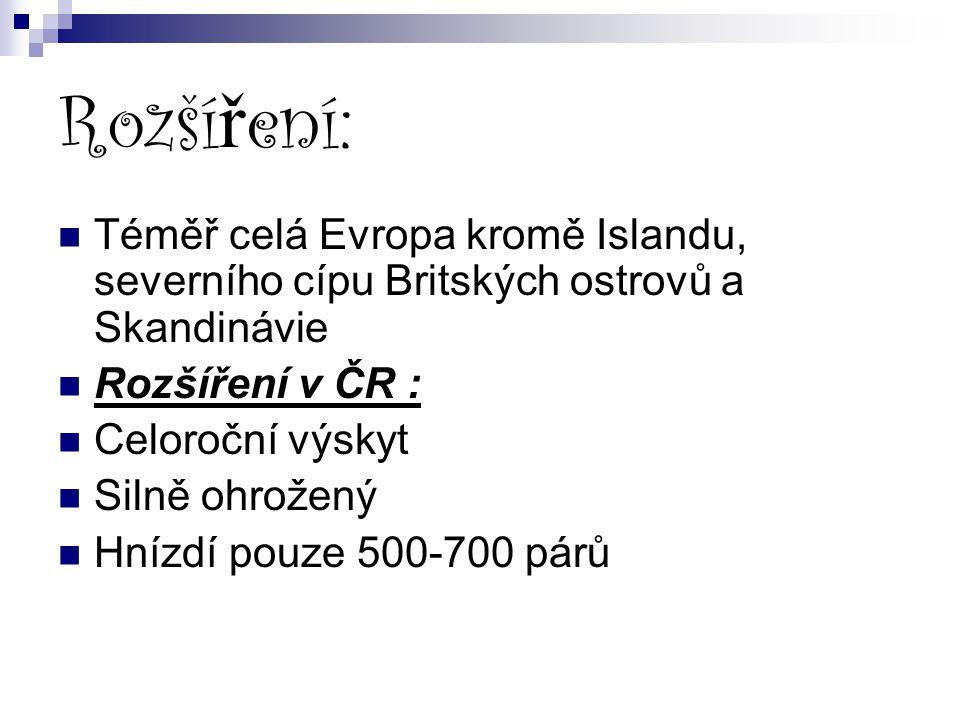 Rozšíření: Téměř celá Evropa kromě Islandu, severního cípu Britských ostrovů a Skandinávie. Rozšíření v ČR :