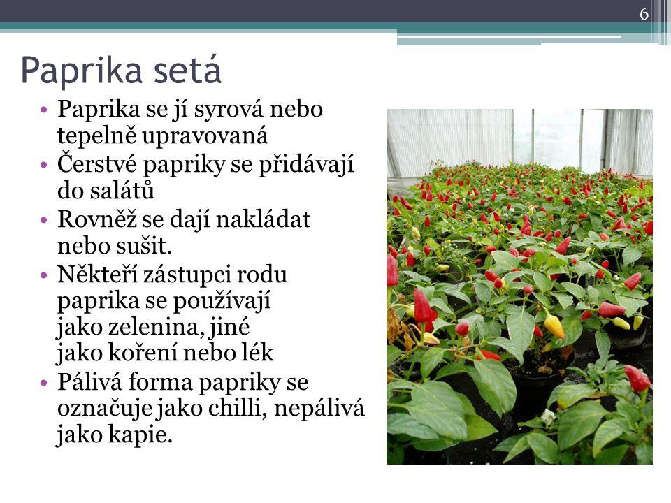 Paprika setá Paprika se jí syrová nebo tepelně upravovaná