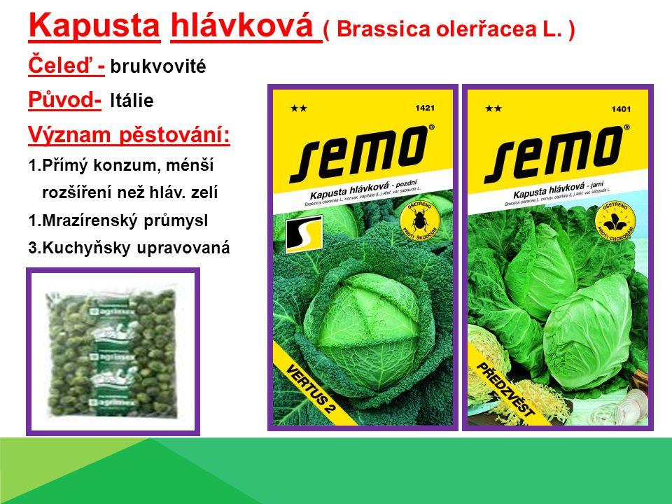 Kapusta hlávková ( Brassica olerřacea L. )