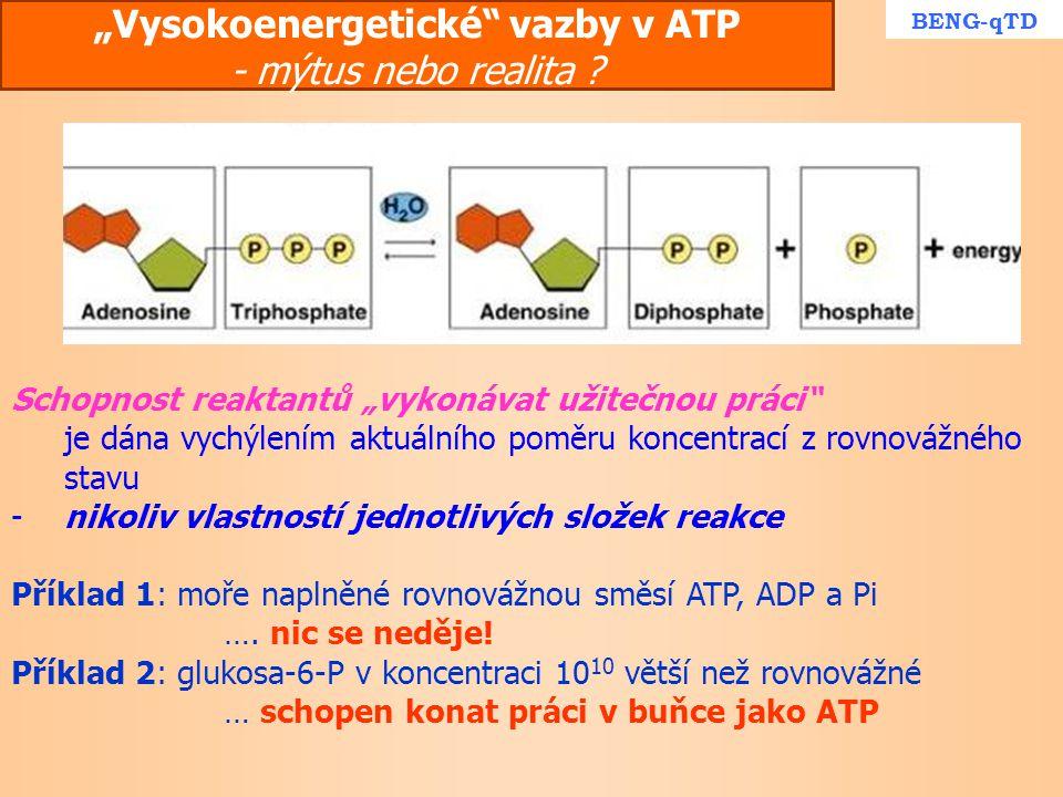"""""""Vysokoenergetické vazby v ATP - mýtus nebo realita"""