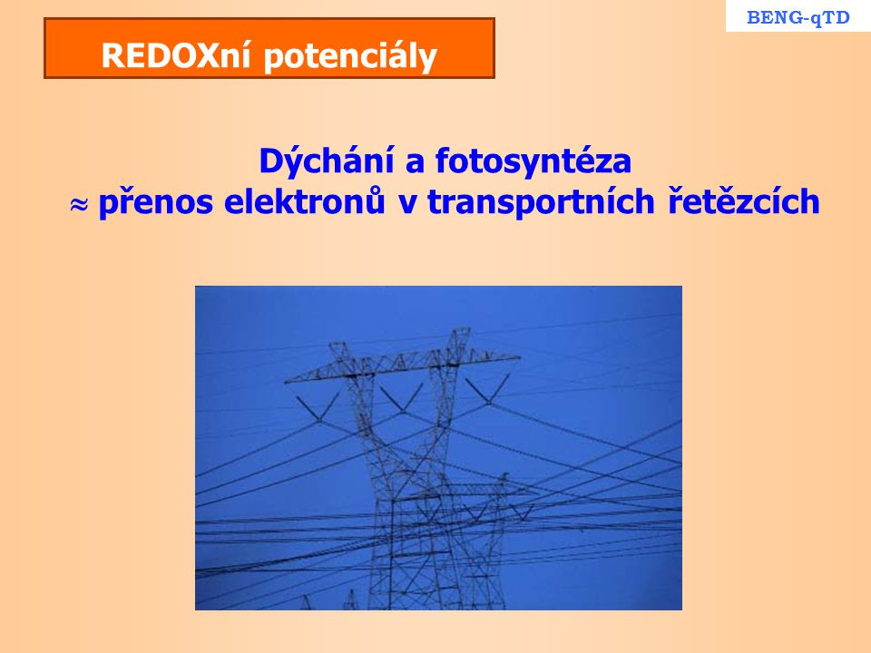  přenos elektronů v transportních řetězcích