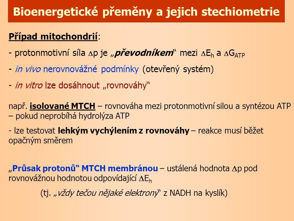 Bioenergetické přeměny a jejich stechiometrie