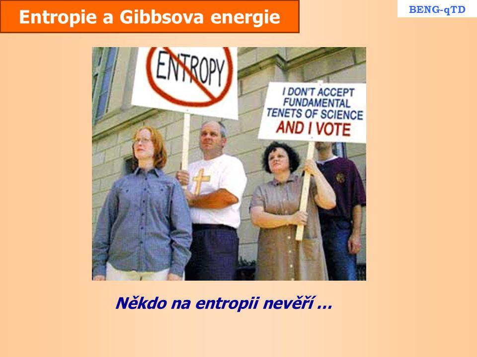 Entropie a Gibbsova energie