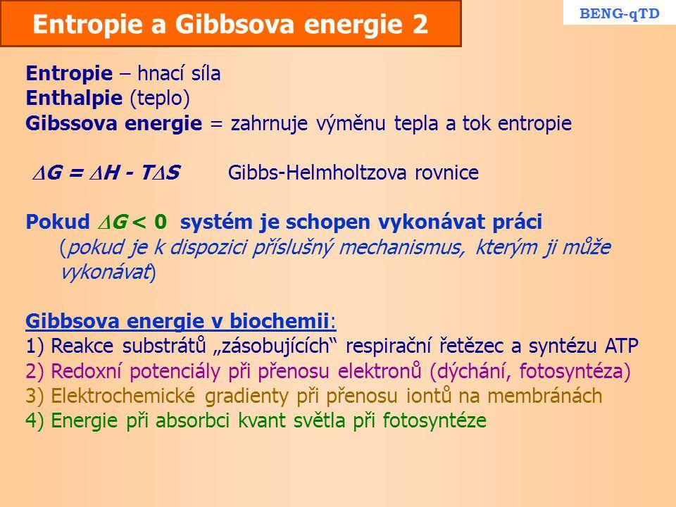 Entropie a Gibbsova energie 2